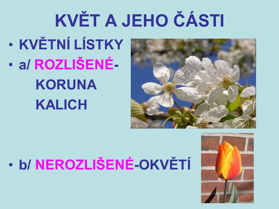 KVĚT A JEHO ČÁSTI KVĚTNÍ LÍSTKY a/ ROZLIŠENÉ- KORUNA KALICH b/ NEROZLIŠENÉ-OKVĚTÍ