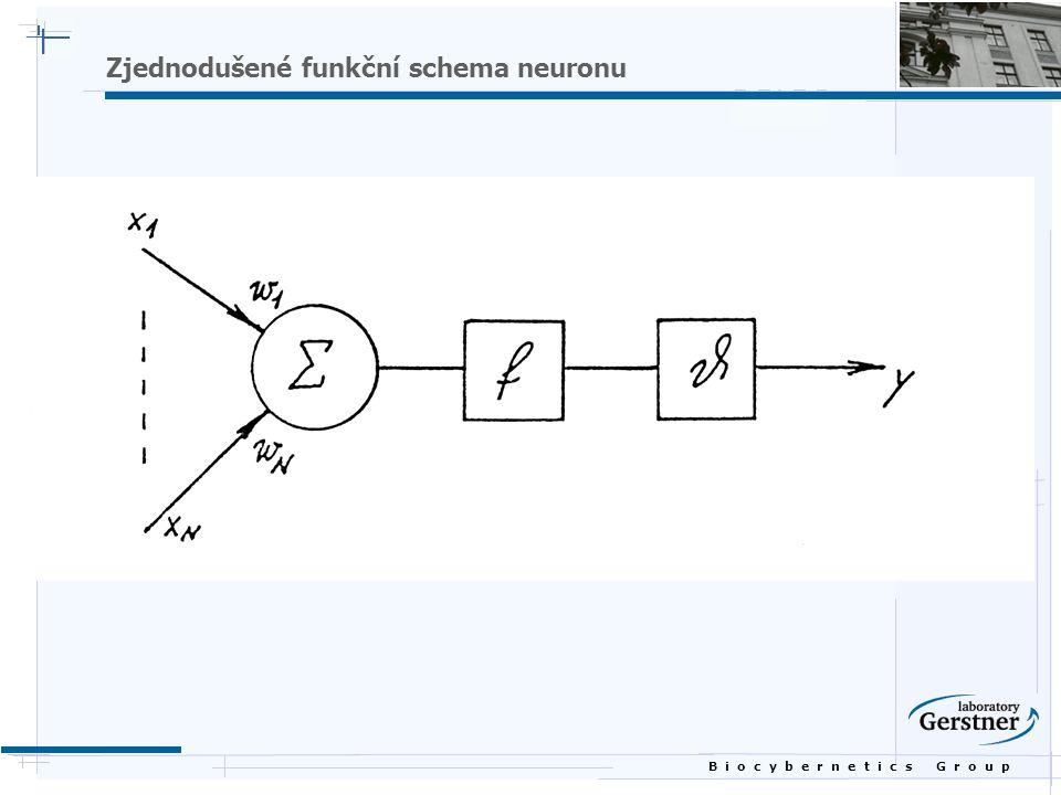 B i o c y b e r n e t i c s G r o u p Zjednodušené funkční schema neuronu