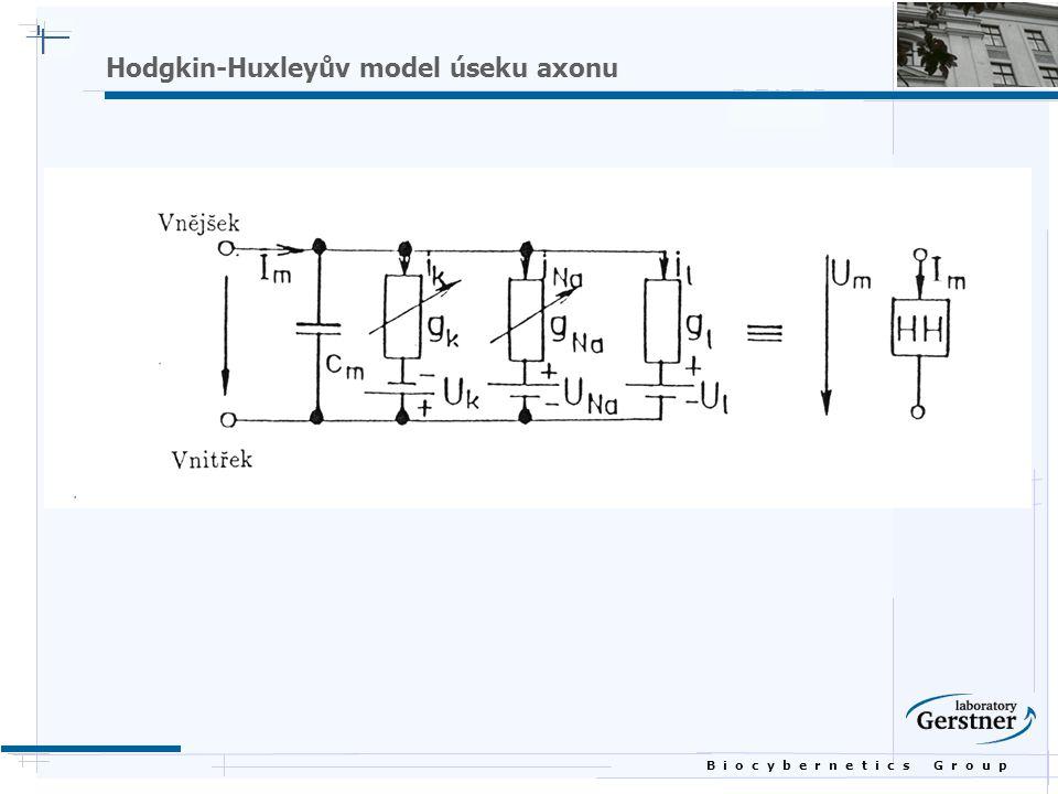 B i o c y b e r n e t i c s G r o u p Hodgkin-Huxleyův model úseku axonu