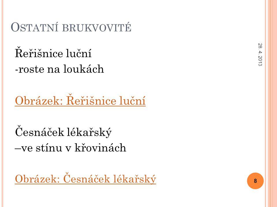 Z DROJE Použitá literatura Mgr.Čabradová V., RNDr.