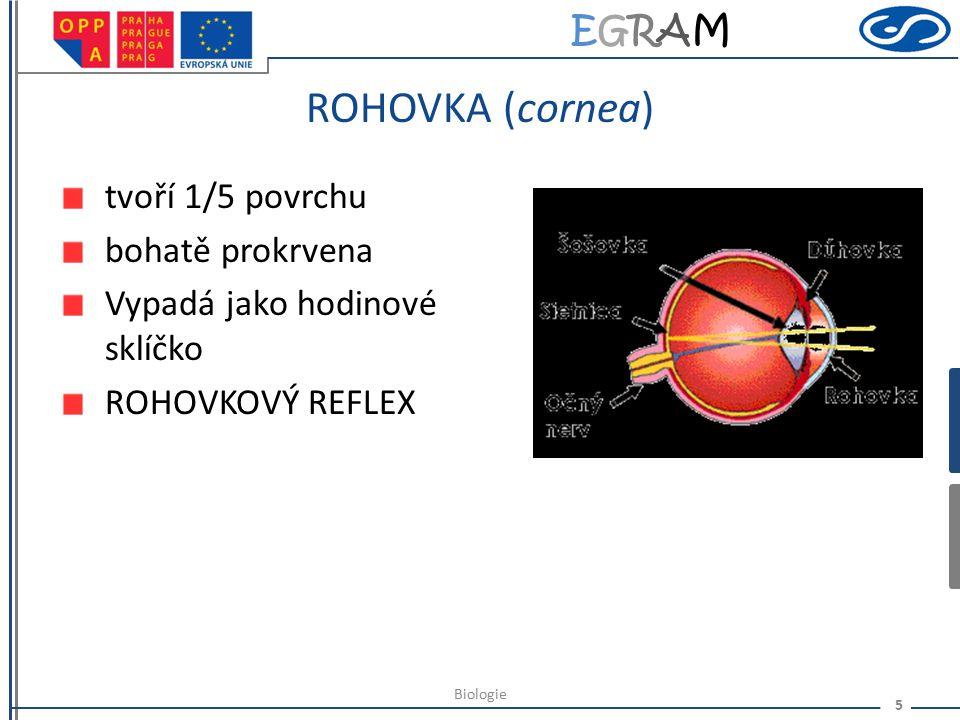 EGRAMEGRAM BĚLIMA (sclera) Tvoří 4/5 povrchu oční koule Bílá barva – vazivová membrána Udržuje tvar a velikost oční koule 4 Biologie