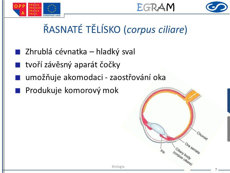 EGRAMEGRAM CÉVNATKA (chorioidea) Obsahuje mnoho cév a pigmentovaných buněk Vyživuje oko 6 Biologie