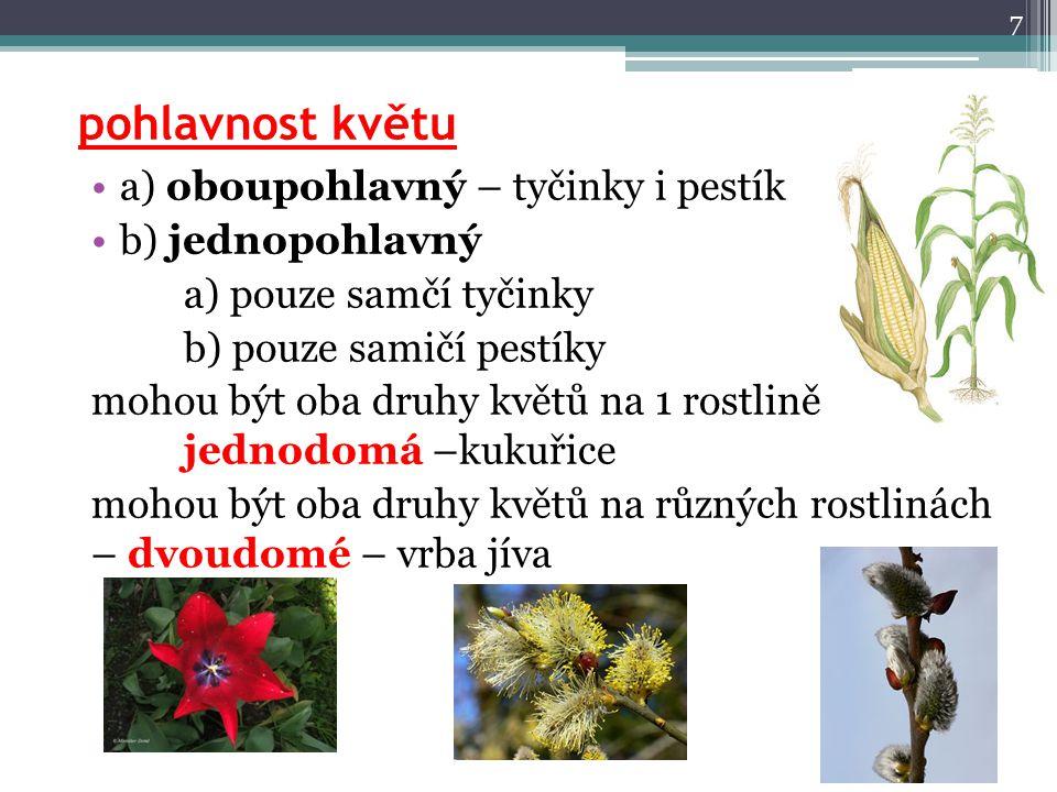 pohlavnost květu a) oboupohlavný – tyčinky i pestík b) jednopohlavný a) pouze samčí tyčinky b) pouze samičí pestíky mohou být oba druhy květů na 1 ros