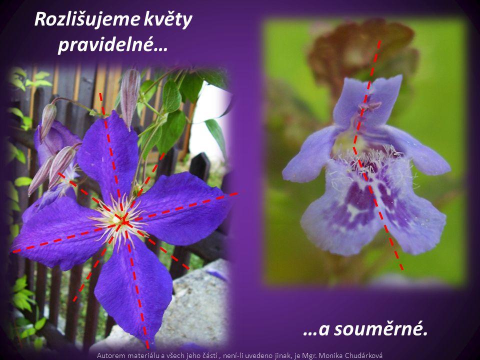 Rozlišujeme květy pravidelné… …a souměrné. Autorem materiálu a všech jeho částí, není-li uvedeno jinak, je Mgr. Monika Chudárková
