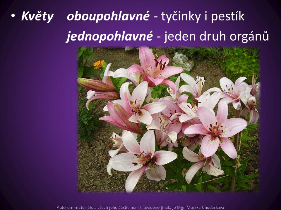 Květy oboupohlavné - tyčinky i pestík jednopohlavné - jeden druh orgánů Autorem materiálu a všech jeho částí, není-li uvedeno jinak, je Mgr. Monika Ch
