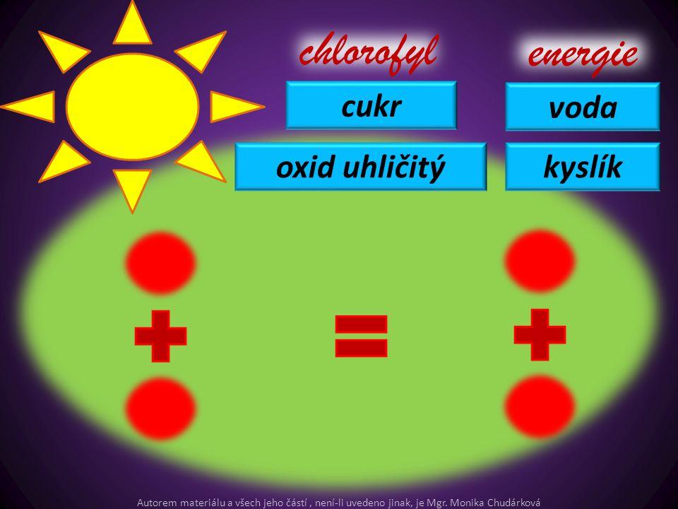 cukr chlorofyl energie voda kyslíkoxid uhličitý Autorem materiálu a všech jeho částí, není-li uvedeno jinak, je Mgr. Monika Chudárková