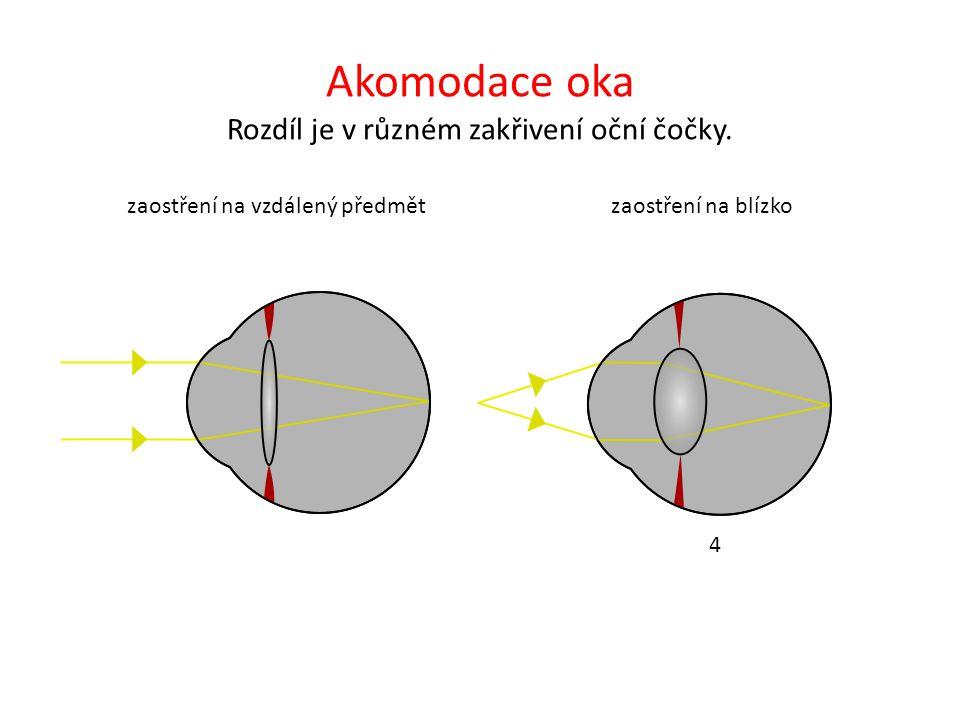 Akomodace oka Rozdíl je v různém zakřivení oční čočky. 4 zaostření na vzdálený předmětzaostření na blízko 4