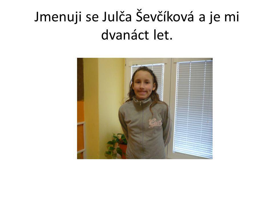 Jmenuji se Julča Ševčíková a je mi dvanáct let.