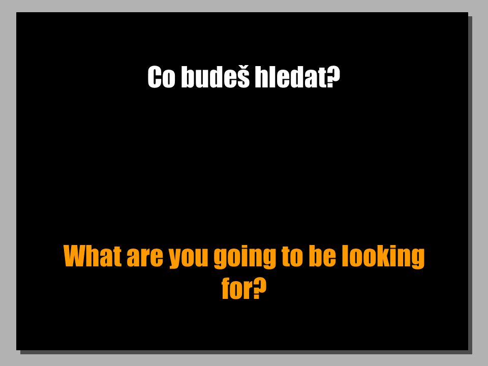 Co budeš hledat? What are you going to be looking for?