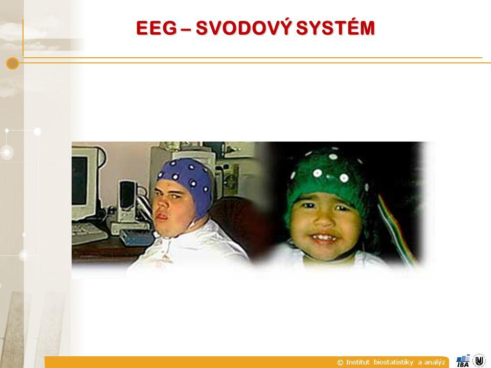 © Institut biostatistiky a analýz EEG – SVODOVÝ SYSTÉM
