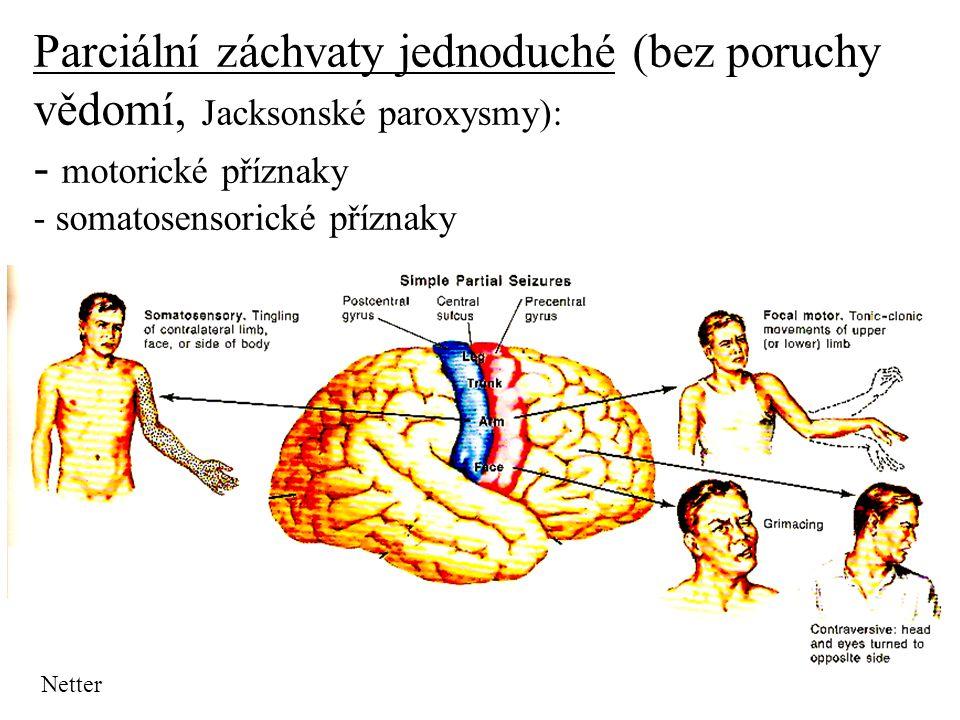 Parciální záchvaty jednoduché (bez poruchy vědomí, Jacksonské paroxysmy): - motorické příznaky - somatosensorické příznaky Netter