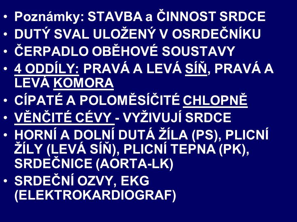 Téma: STAVBA A ČINNOST SRDCE- PŘÍRODOPIS - 8.ROČNÍK Použitý software: držitel licence - ZŠ J.