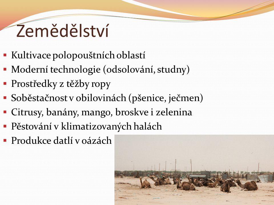 Zemědělství  Kultivace polopouštních oblastí  Moderní technologie (odsolování, studny)  Prostředky z těžby ropy  Soběstačnost v obilovinách (pšenice, ječmen)  Citrusy, banány, mango, broskve i zelenina  Pěstování v klimatizovaných halách  Produkce datlí v oázách