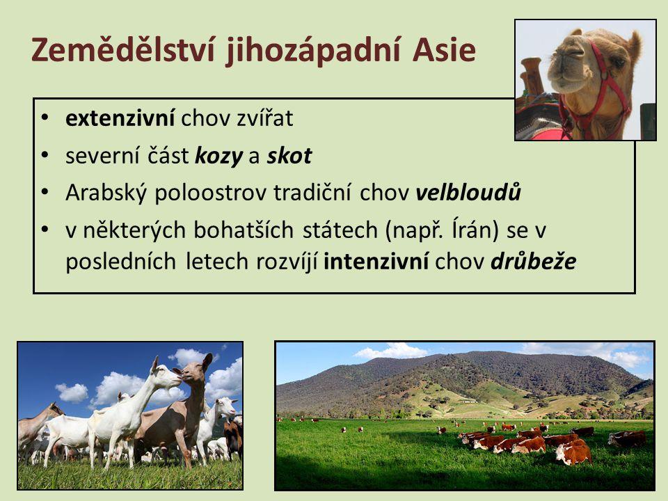 extenzivní chov zvířat severní část kozy a skot Arabský poloostrov tradiční chov velbloudů v některých bohatších státech (např. Írán) se v posledních