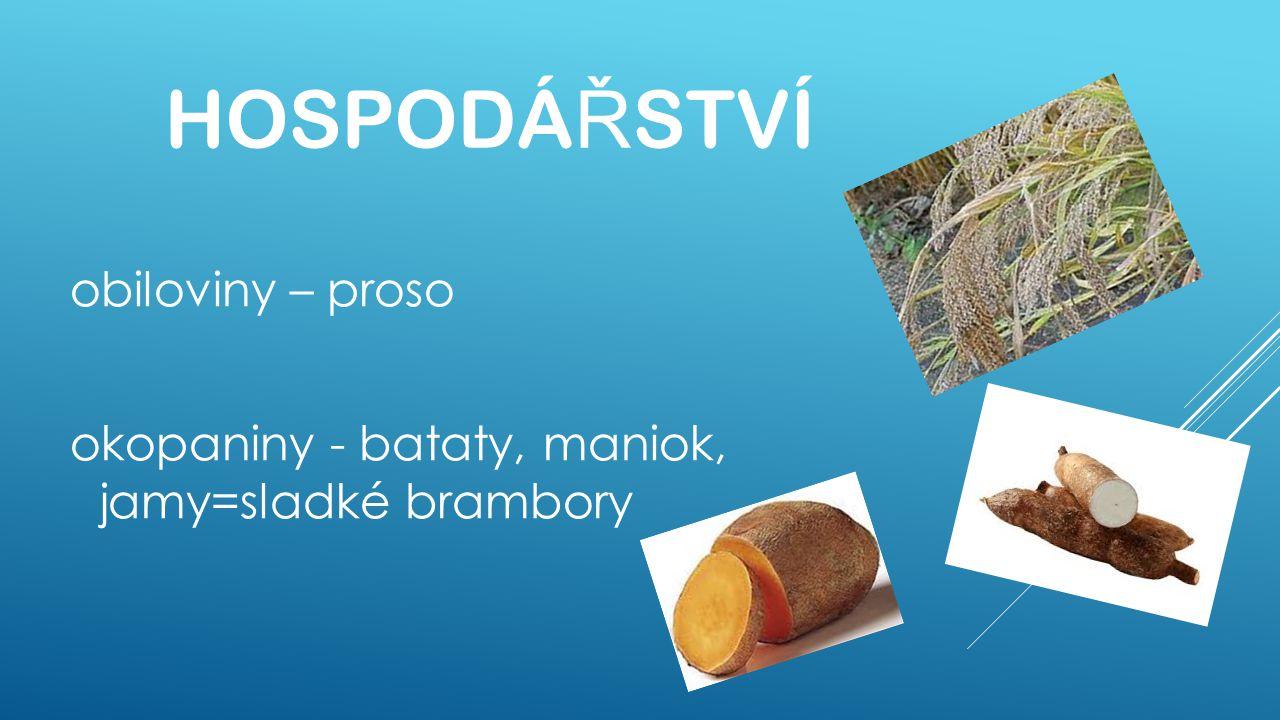 HOSPODÁ Ř STVÍ obiloviny – proso okopaniny - bataty, maniok, jamy=sladké brambory