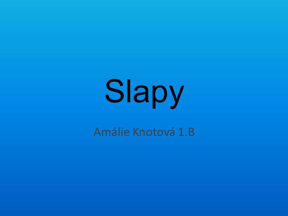 Slapy Amálie Knotová 1.B
