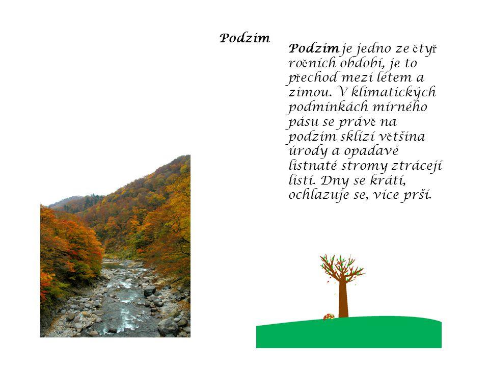 Podzim Podzim je jedno ze č ty ř ro č ních období, je to p ř echod mezi létem a zimou.