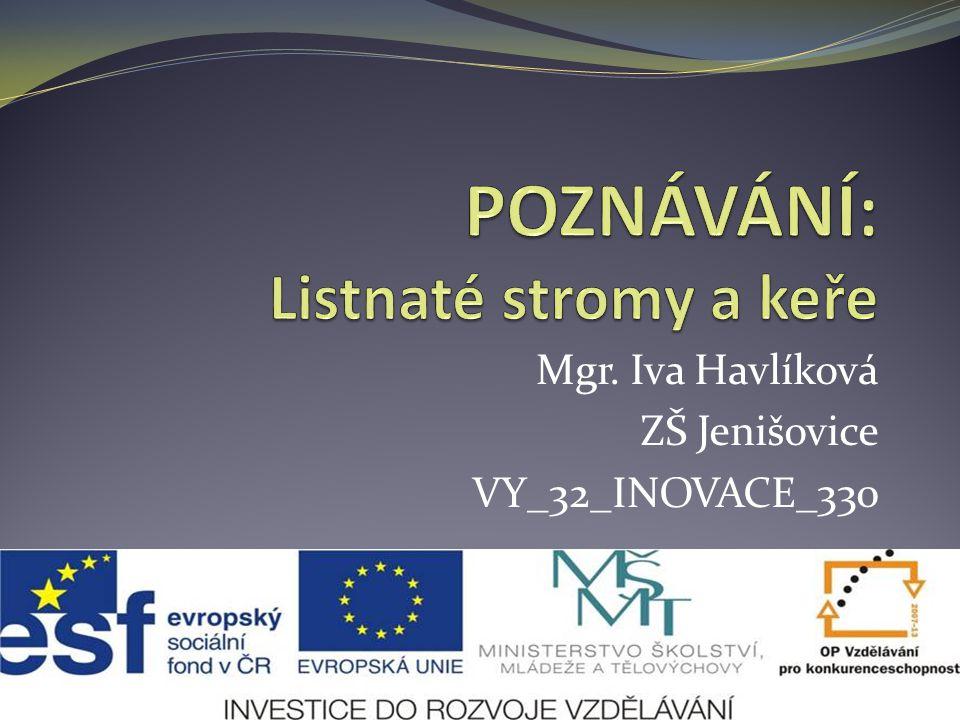 Mgr. Iva Havlíková ZŠ Jenišovice VY_32_INOVACE_330