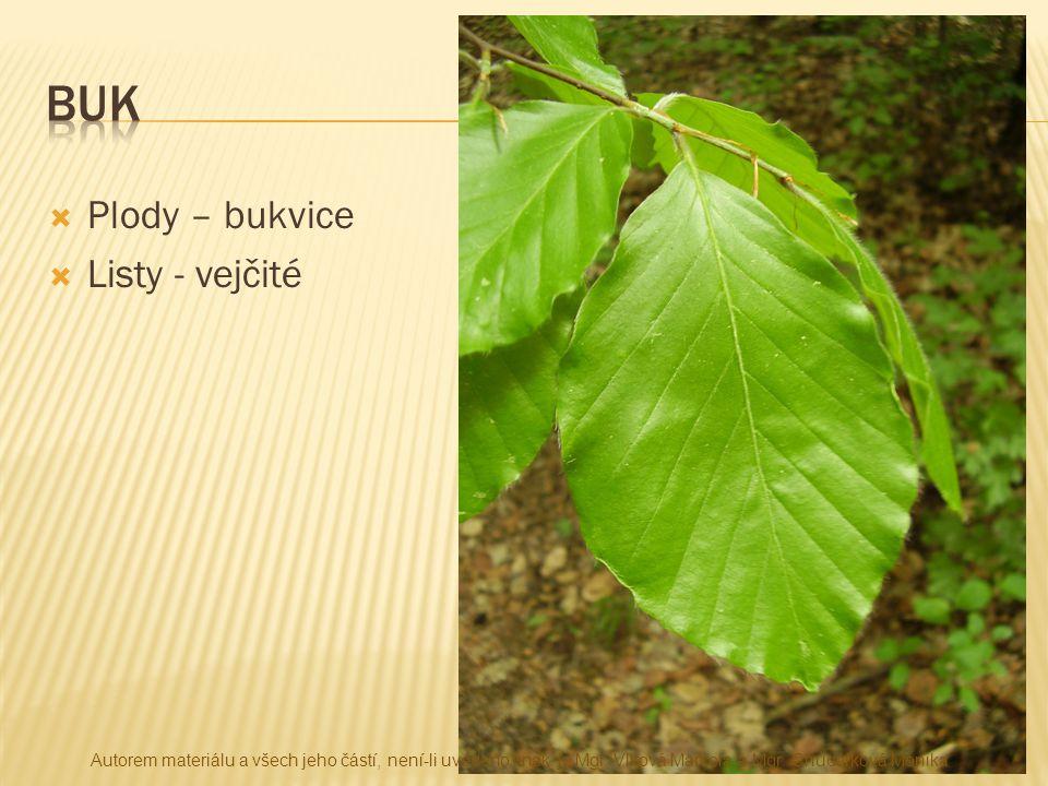  Plody – bukvice  Listy - vejčité Autorem materiálu a všech jeho částí, není-li uvedeno jinak, je Mgr. Vlková Marcela a Mgr. Chudárková Monika