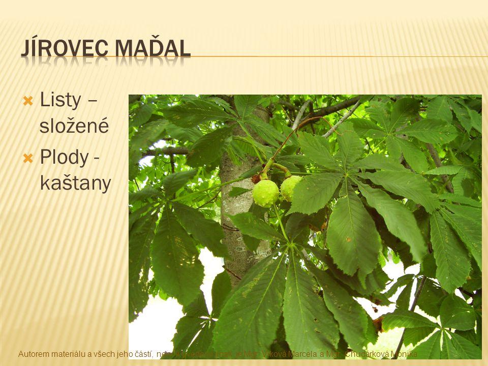  Listy – složené  Plody - kaštany Autorem materiálu a všech jeho částí, není-li uvedeno jinak, je Mgr. Vlková Marcela a Mgr. Chudárková Monika