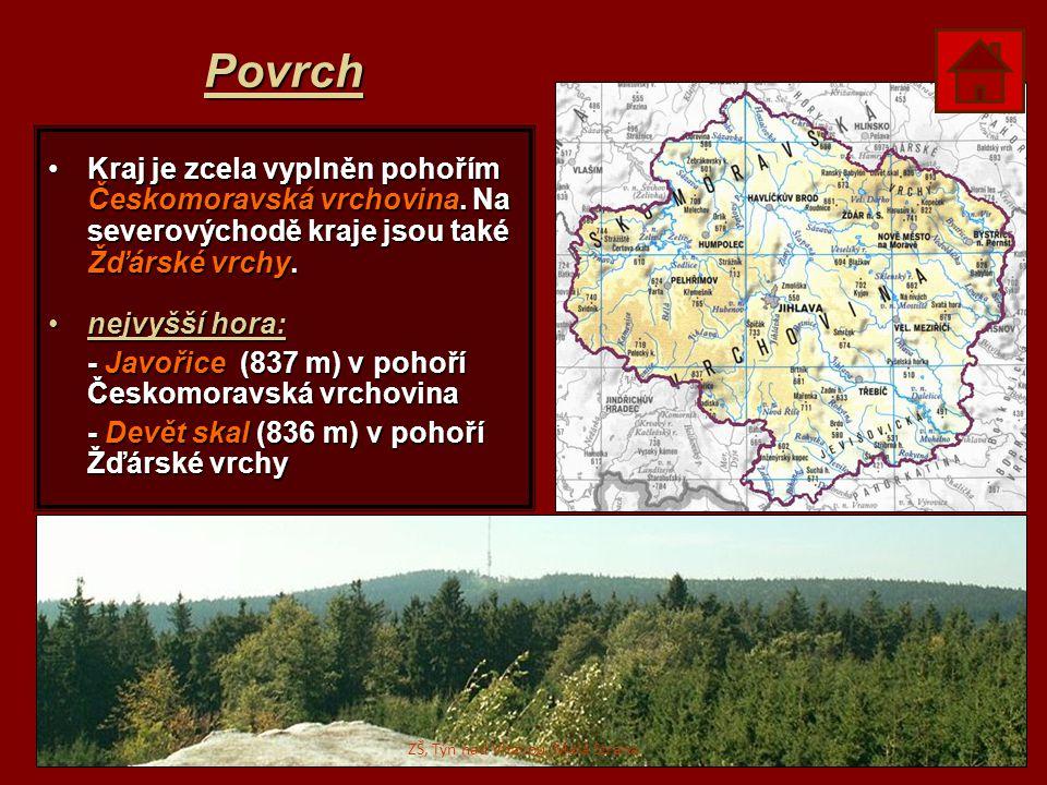 Povrch Kraj je zcela vyplněn pohořím Českomoravská vrchovina. Na severovýchodě kraje jsou také Žďárské vrchy.Kraj je zcela vyplněn pohořím Českomoravs