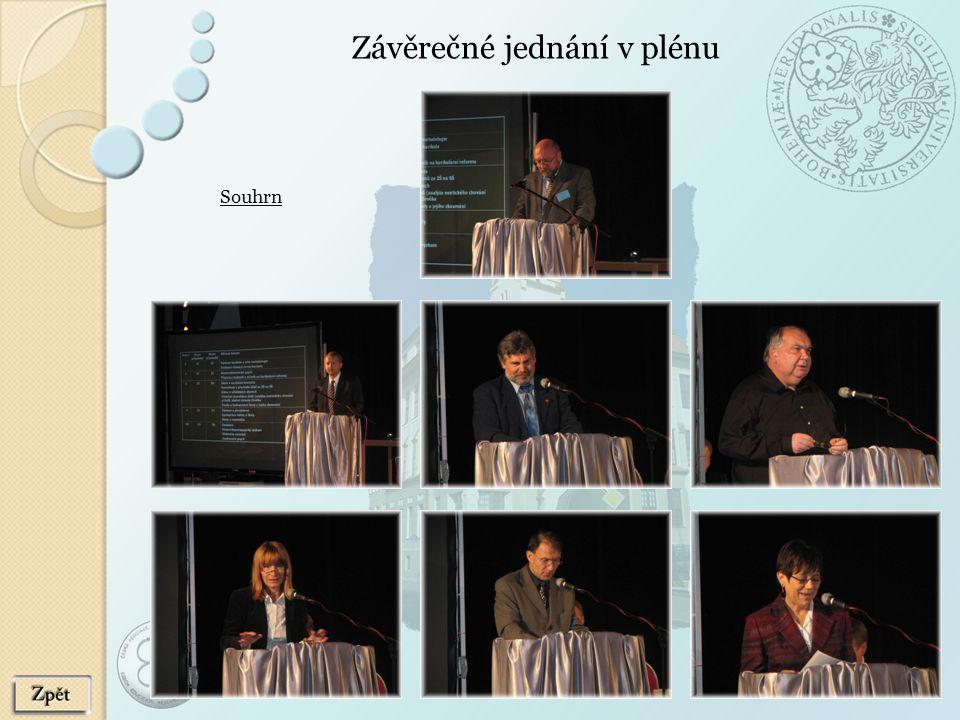 Závěrečné jednání v plénu Souhrn
