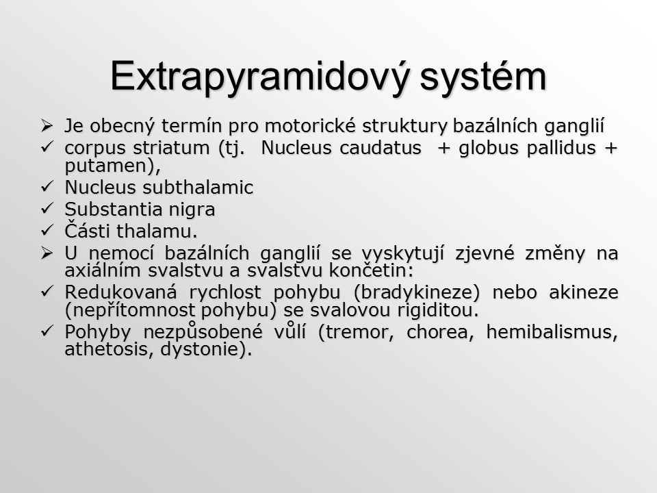 Extrapyramidový systém  Je obecný termín pro motorické struktury bazálních ganglií corpus striatum (tj. Nucleus caudatus + globus pallidus + putamen)
