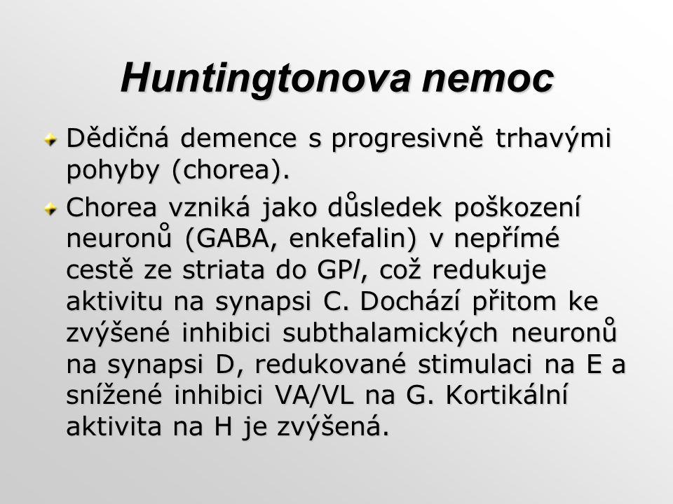 Huntingtonova nemoc Dědičná demence s progresivně trhavými pohyby (chorea). Chorea vzniká jako důsledek poškození neuronů (GABA, enkefalin) v nepřímé