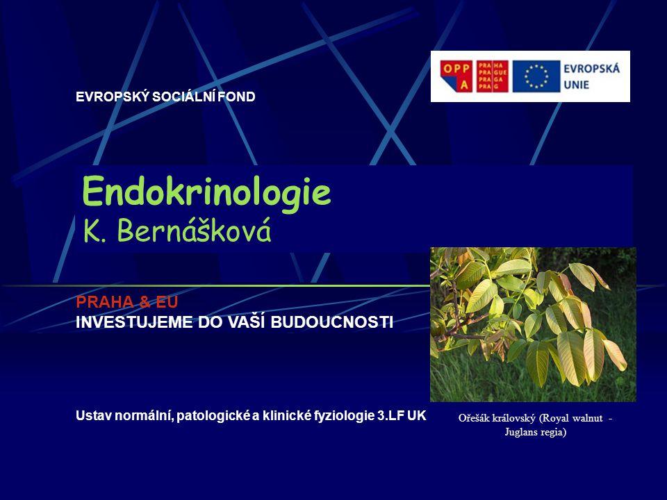 Endokrinologie K. Bernášková EVROPSKÝ SOCIÁLNÍ FOND PRAHA & EU INVESTUJEME DO VAŠÍ BUDOUCNOSTI Ustav normální, patologické a klinické fyziologie 3.LF