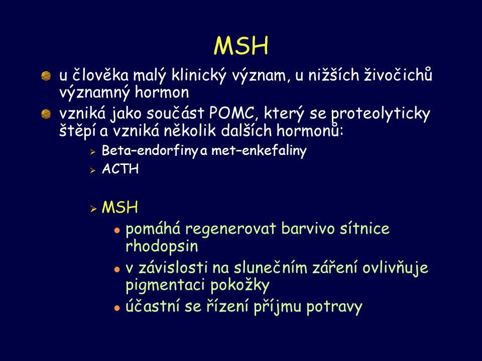 MSH u člověka malý klinický význam, u nižších živočichů významný hormon vzniká jako součást POMC, který se proteolyticky štěpí a vzniká několik dalšíc