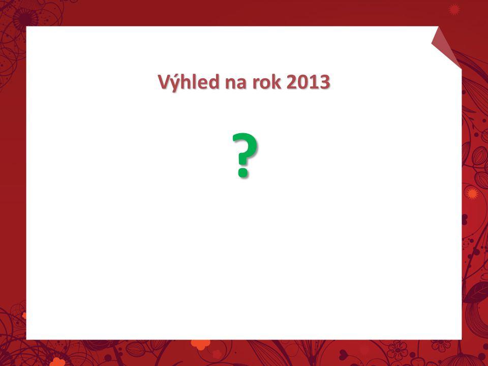 Výhled na rok 2013 ?