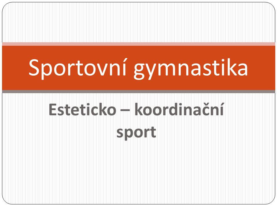 Esteticko – koordinační sport Sportovní gymnastika