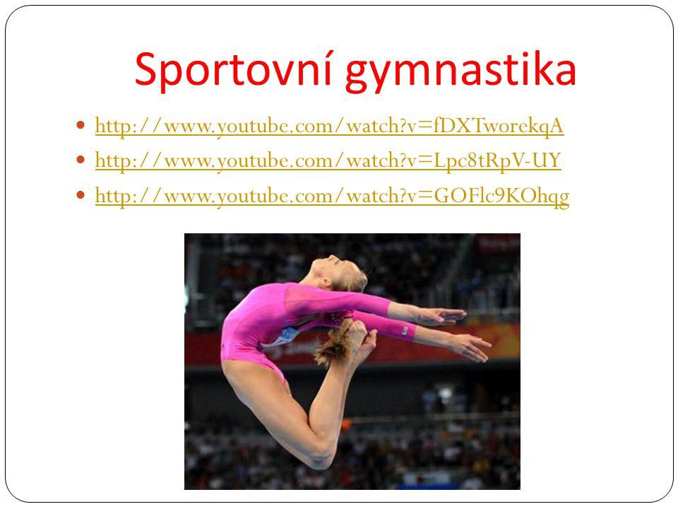 Sportovní gymnastika http://www.youtube.com/watch?v=fDXTworekqA http://www.youtube.com/watch?v=Lpc8tRpV-UY http://www.youtube.com/watch?v=GOFlc9KOhqg
