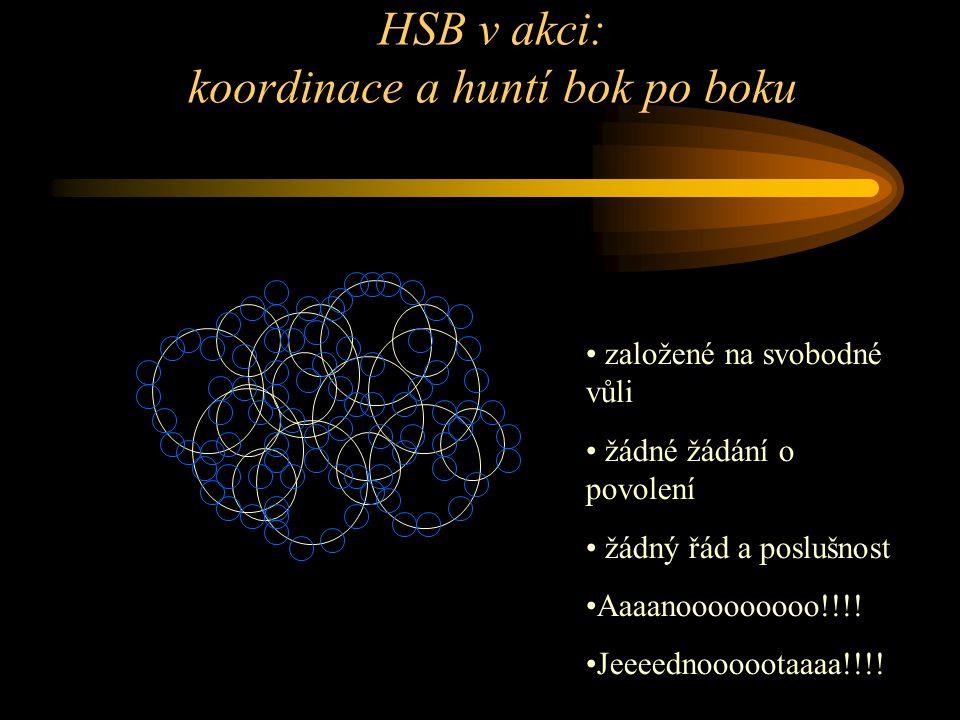 HSB v akci: koordinace a huntí bok po boku založené na svobodné vůli žádné žádání o povolení žádný řád a poslušnost Aaaanooooooooo!!!.