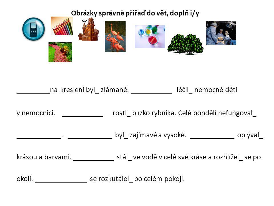 Obrázky správně přiřaď do vět, doplň i/y _________na kreslení byl_ zlámané. ___________ léčil_ nemocné děti v nemocnici. ___________ rostl_ blízko ryb