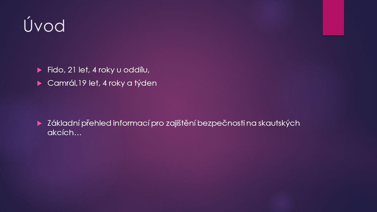 Použité zdroje:  Jiří Hubka – Šmoula, Bezpečnost, čekatelský kurz Corpus 2012, dostupné na adrese http://files.ckcorpus.webnode.cz/200000049- 4c8a34d897/Bezpe%C4%8Dnost_prezentace.pptxhttp://files.ckcorpus.webnode.cz/200000049- 4c8a34d897/Bezpe%C4%8Dnost_prezentace.pptx  Skripta oboru bezpečnost, čekatelský kurz Řemřich, dostupné na adrese http://www.blanik.info/remrich/obory/bezpecnosthttp://www.blanik.info/remrich/obory/bezpecnost