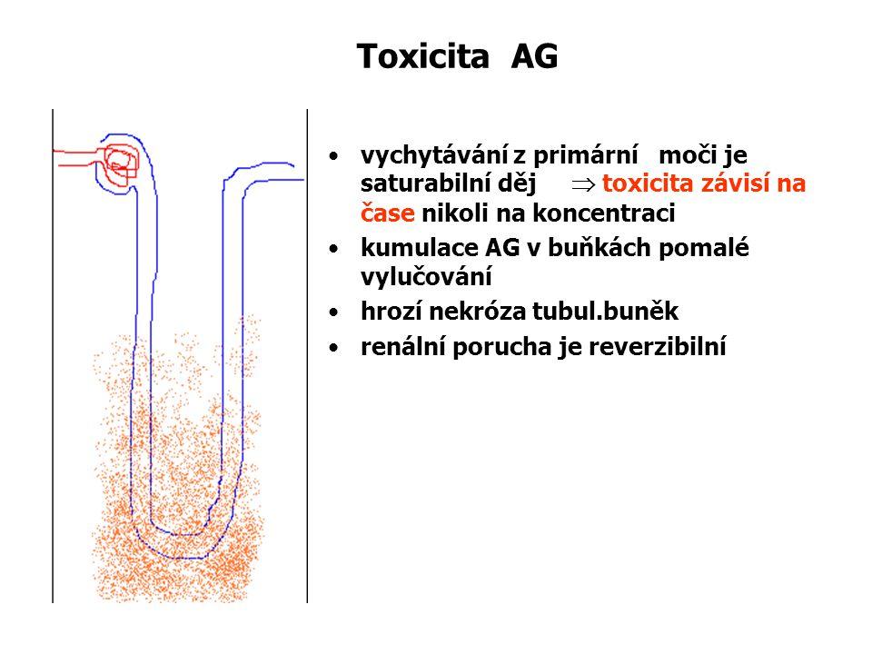 Toxicita AG vychytávání z primární moči je saturabilní děj  toxicita závisí na čase nikoli na koncentraci kumulace AG v buňkách pomalé vylučování hro