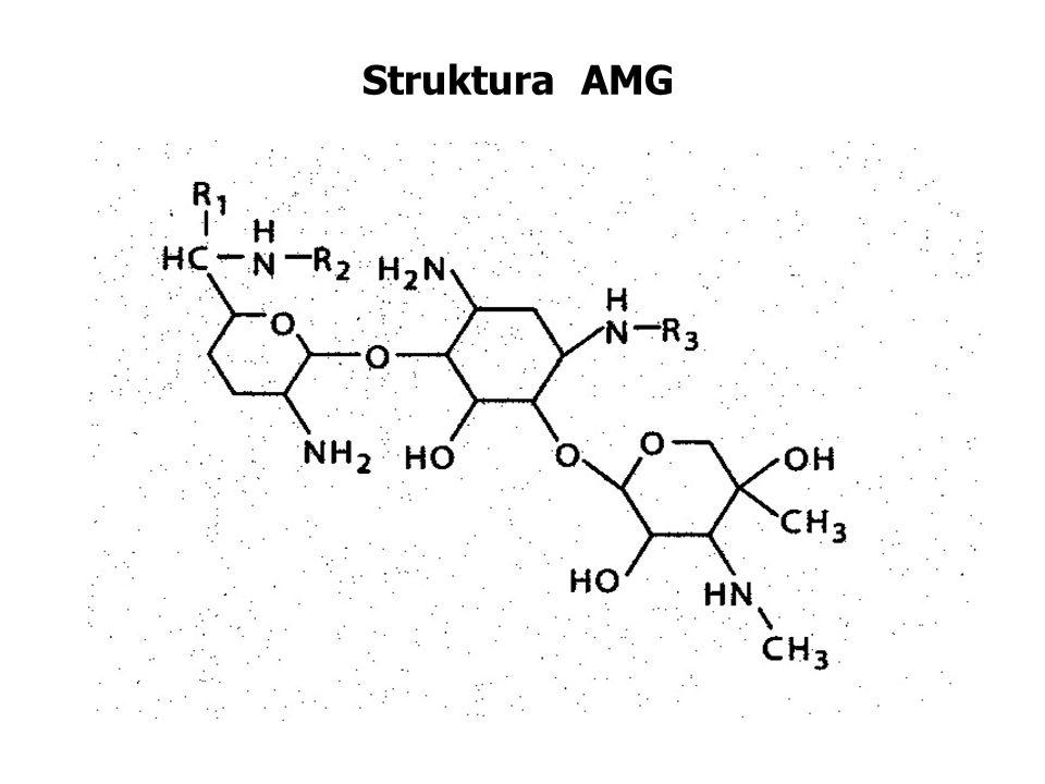 Struktura AMG