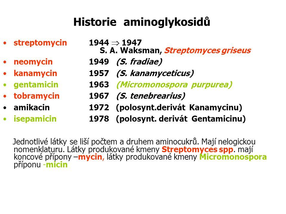Historie aminoglykosidů streptomycin1944  1947 S. A. Waksman, Streptomyces griseus neomycin1949 (S. fradiae) kanamycin1957 (S. kanamyceticus) gentami