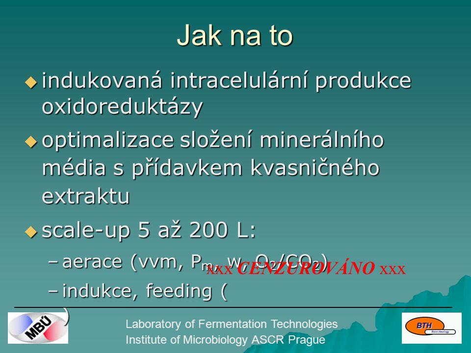 Laboratory of Fermentation Technologies Institute of Microbiology ASCR Prague Jak na to  indukovaná intracelulární produkce oxidoreduktázy  optimalizace složení minerálního média s přídavkem kvasničného extraktu  scale-up 5 až 200 L: –aerace (vvm, P m, w, O 2 /CO 2 ) –indukce, feeding ( ) xxx CENZUROVÁNO xxx