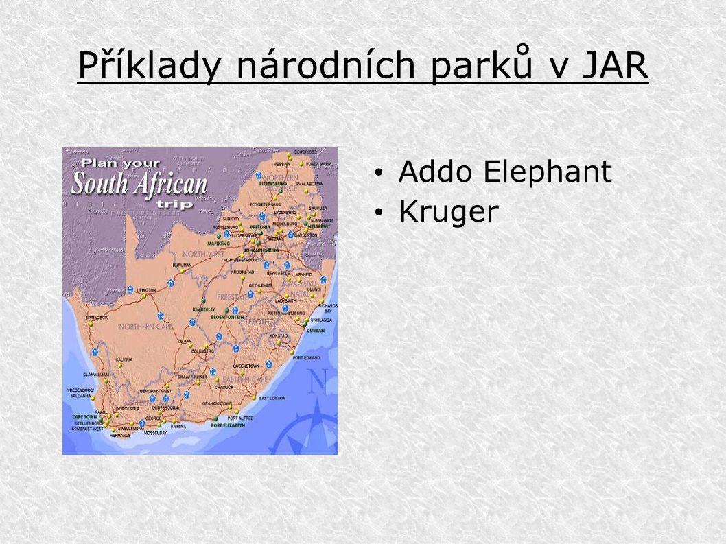 Příklady národních parků v JAR Addo Elephant Kruger