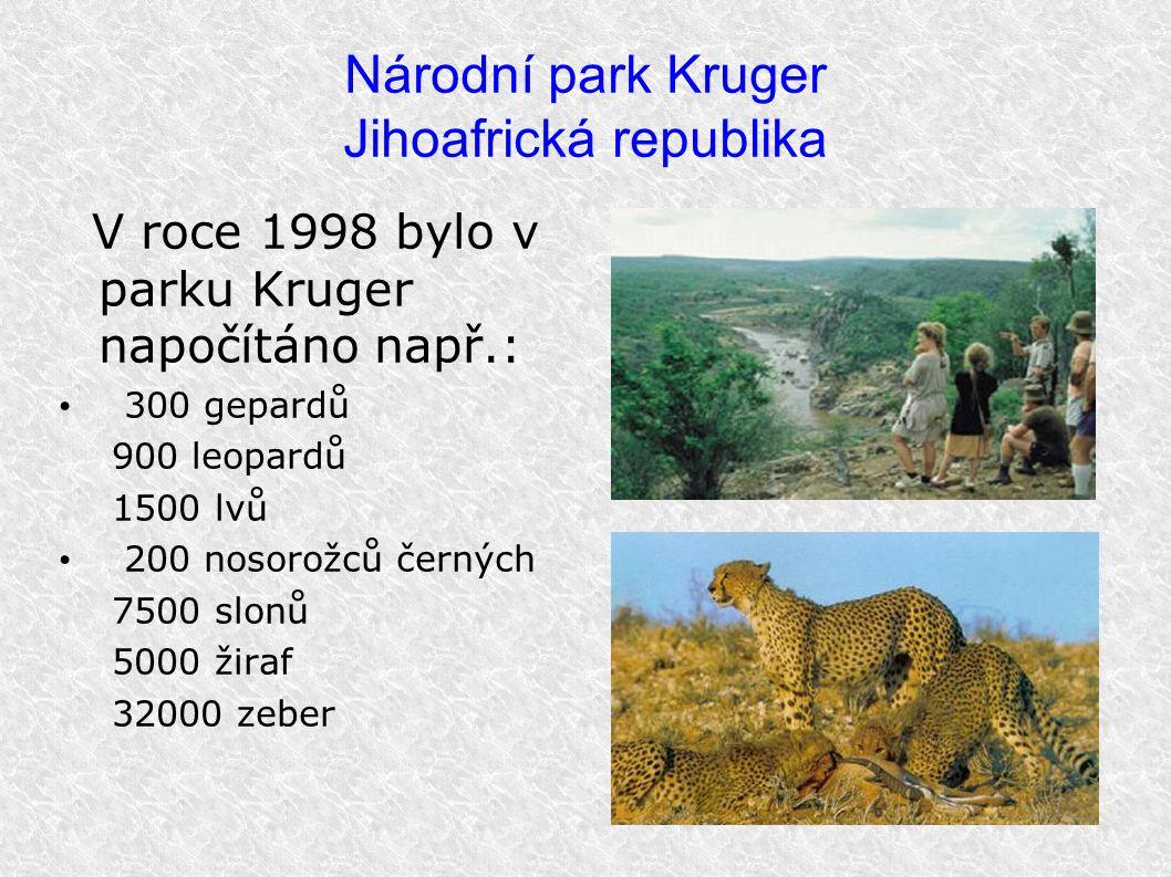 Národní park Kruger Jihoafrická republika V roce 1998 bylo v parku Kruger napočítáno např.: 300 gepardů 900 leopardů 1500 lvů 200 nosorožců černých 75