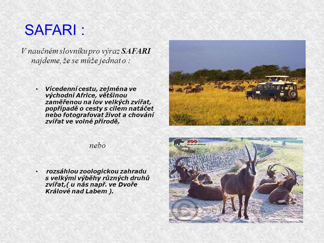 SAFARI : V naučném slovníku pro výraz SAFARI najdeme, že se může jednat o : Vícedenní cestu, zejména ve východní Africe, většinou zaměřenou na lov vel