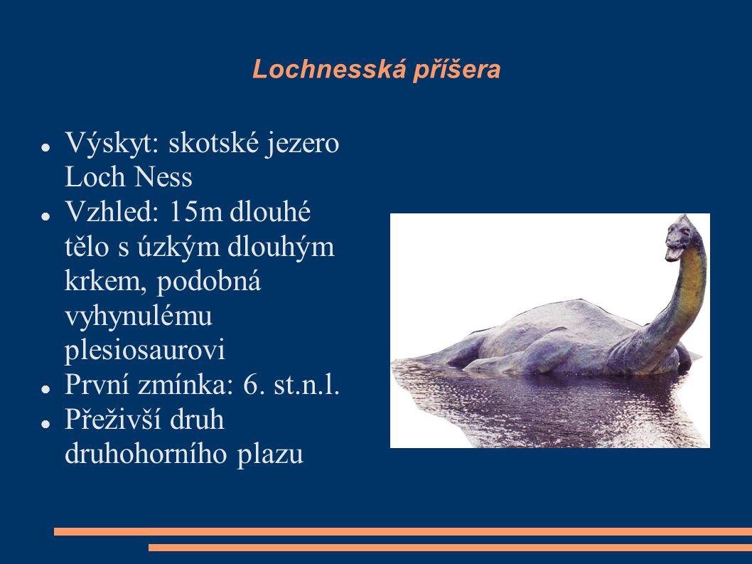Lochnesská příšera Výskyt: skotské jezero Loch Ness Vzhled: 15m dlouhé tělo s úzkým dlouhým krkem, podobná vyhynulému plesiosaurovi První zmínka: 6.