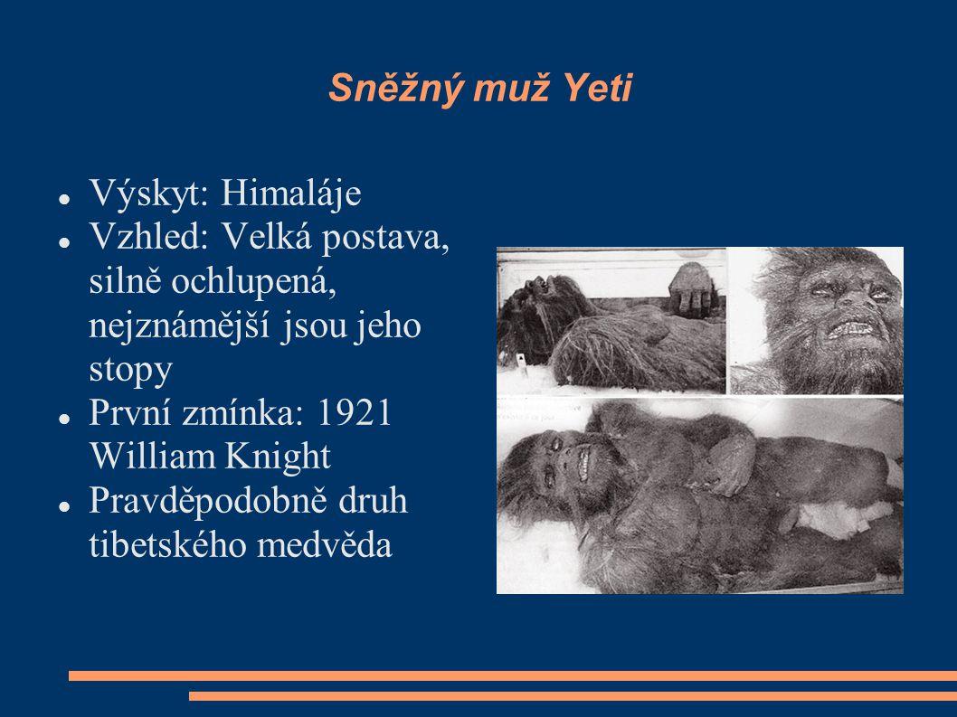Sněžný muž Yeti Výskyt: Himaláje Vzhled: Velká postava, silně ochlupená, nejznámější jsou jeho stopy První zmínka: 1921 William Knight Pravděpodobně druh tibetského medvěda