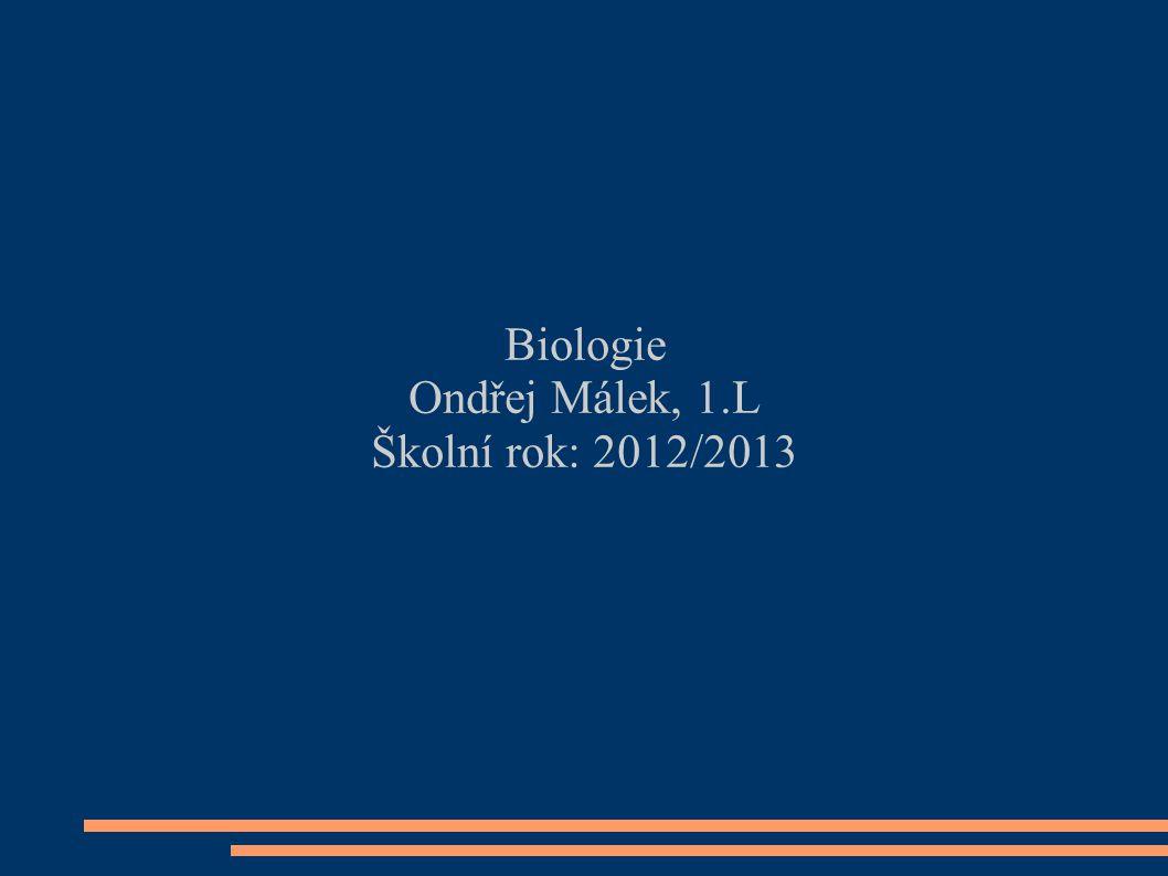 Biologie Ondřej Málek, 1.L Školní rok: 2012/2013