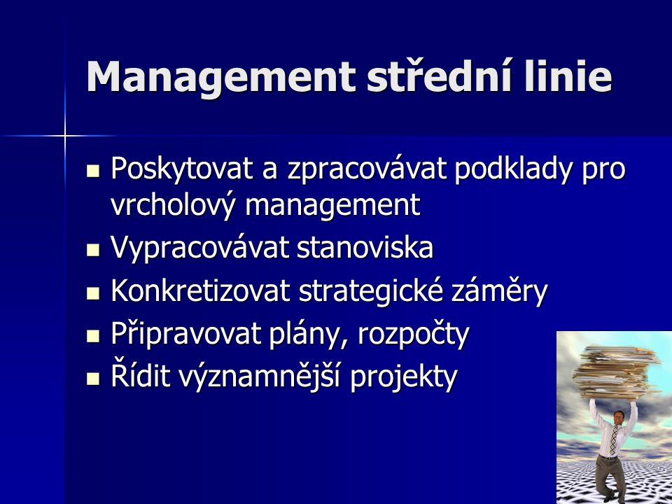 Management střední linie Poskytovat a zpracovávat podklady pro vrcholový management Poskytovat a zpracovávat podklady pro vrcholový management Vypraco