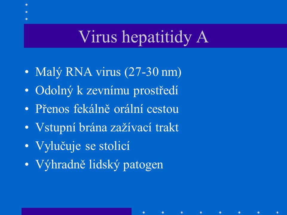 Virus hepatitidy A Malý RNA virus (27-30 nm) Odolný k zevnímu prostředí Přenos fekálně orální cestou Vstupní brána zažívací trakt Vylučuje se stolicí