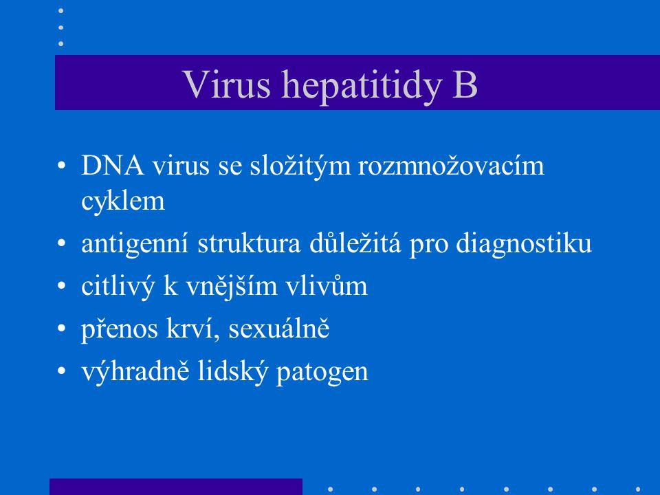 Virus hepatitidy B DNA virus se složitým rozmnožovacím cyklem antigenní struktura důležitá pro diagnostiku citlivý k vnějším vlivům přenos krví, sexuálně výhradně lidský patogen
