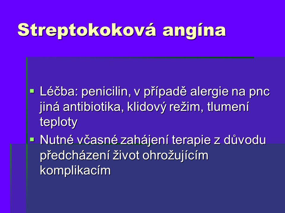 Streptokoková angína  Léčba: penicilin, v případě alergie na pnc jiná antibiotika, klidový režim, tlumení teploty  Nutné včasné zahájení terapie z d